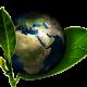 sustainable industrial packaging